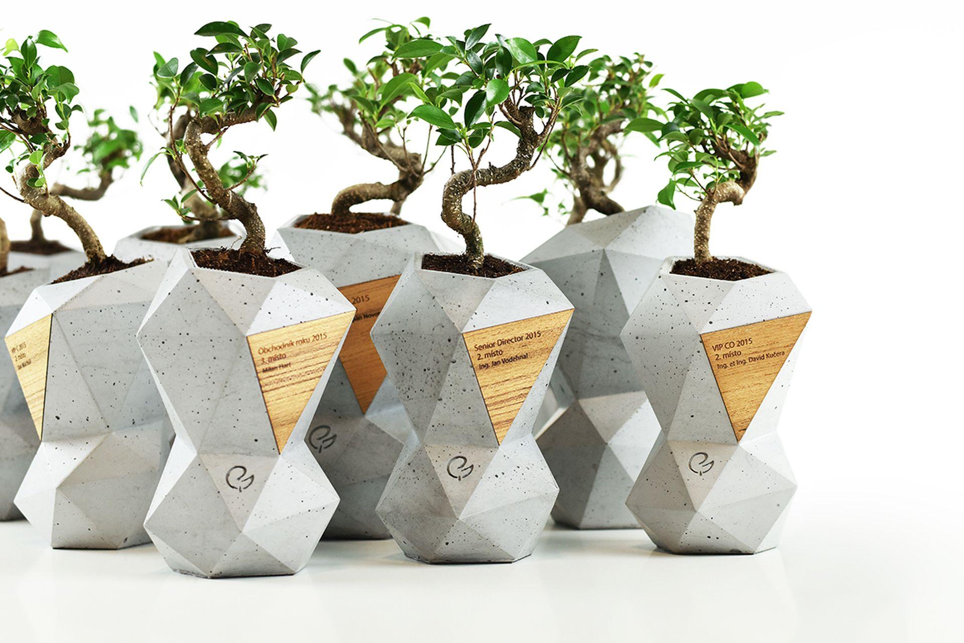 Trofeje Partners